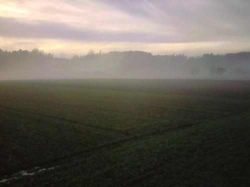 Malen mit Nebel