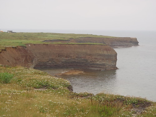 Coal cliff, Table Head, Glace Bay, NS