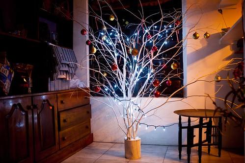 Haitian-Christmas-Tree
