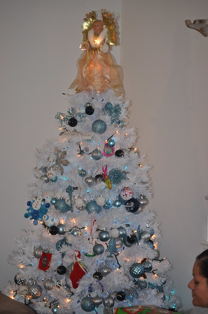 gisselle christmas 2010 (5)