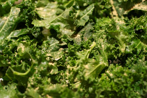Seasoned kale