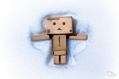 Danboard Snow Angel 11/365