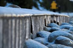 Peterson Park Sand Shelf (Frosty Northport MI)
