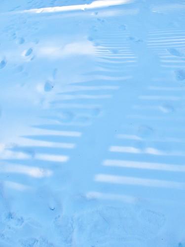 Picket fence on snow