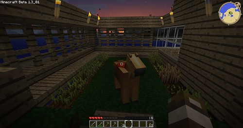 Minecraft - Horse in My Garden!
