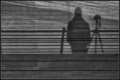 Self portrait shadow