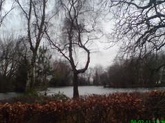 The Lake, Alexandra Park and Palace, Early Feb 2011