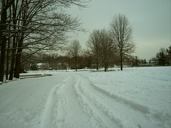Village Park in Cranbury, NJ