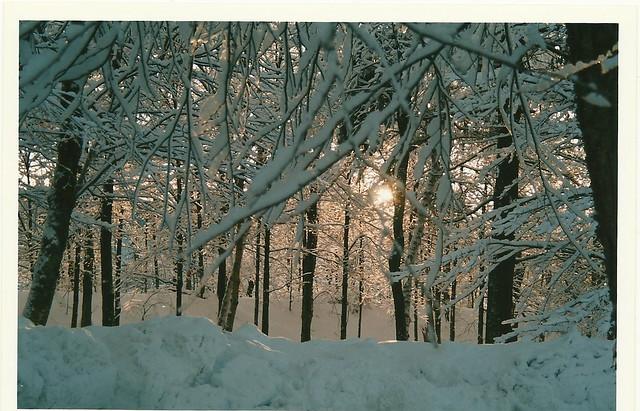 vt winter