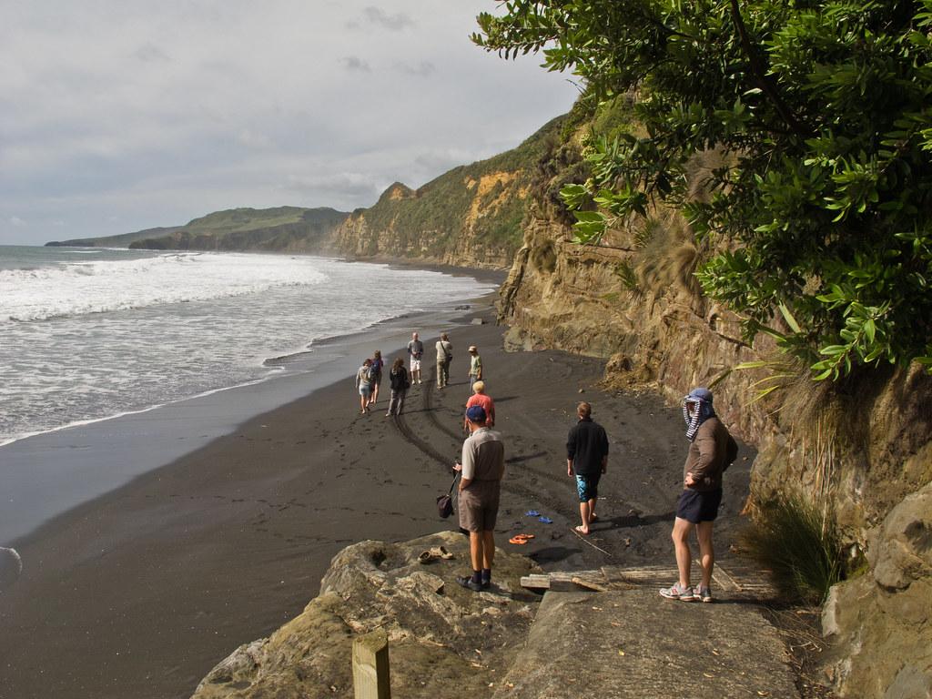 Waikawau Beach