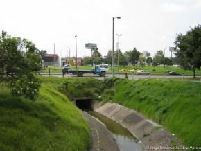 Canal antiguo humedal de Bonanza