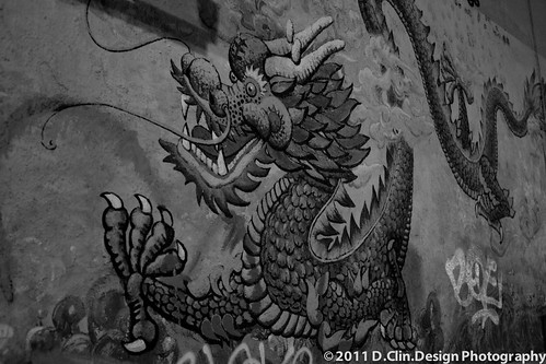 Dragon Wall by d.clin.design