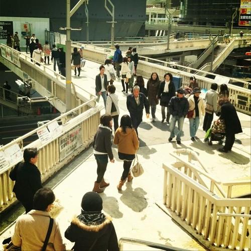 お昼の歩道橋には、老若男女集う。今日はいい天気だよ~!ヾ(๑╹◡╹)ノ