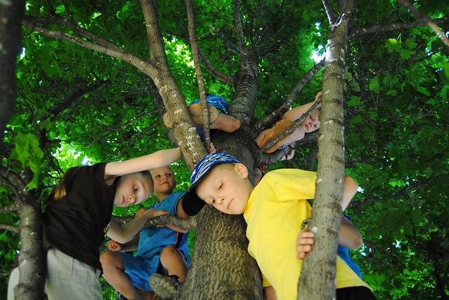 June 2011 Zoo 196