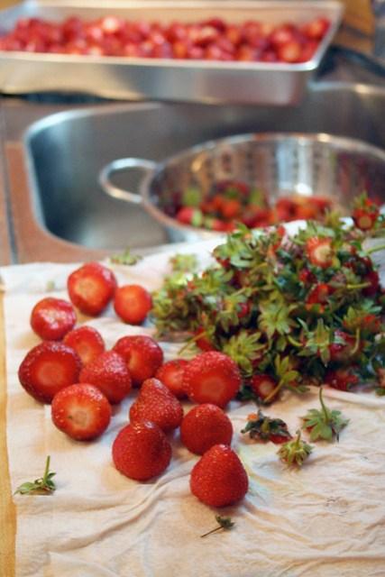 berries_preserving