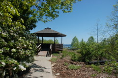 Bad Creek Overlook Gazebo