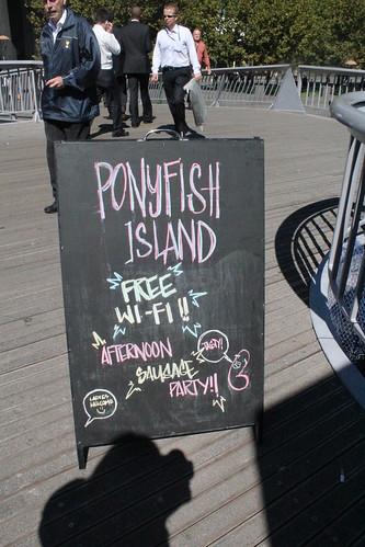ponyfish2