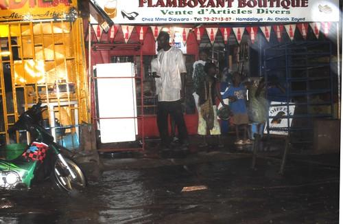 Mango rains in Bamako