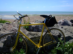Brookadice. Bikes by the sea.