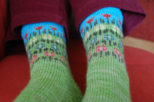 Longing for Spring Socks