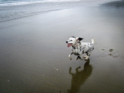 Cannon Beach 2011 - Day 5