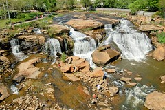 Falls of the Reedy River