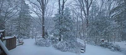 Winter Wonderland panorama