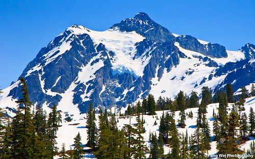 Snow Covered Peak, Mount Baker