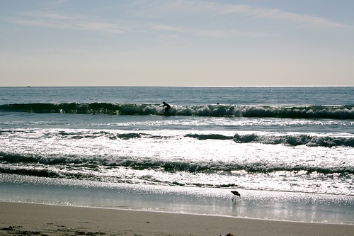 Even the surfers knew it was a perfect day at the beach