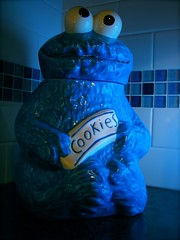2011/365: January 16: Cookie Monster