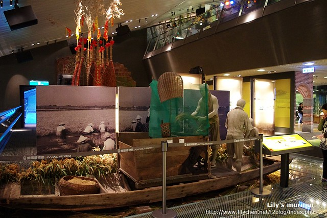 平原層展覽之一,正在將收割後的稻米將穀粒用機器打下。機器還是腳踩才能轉動的。