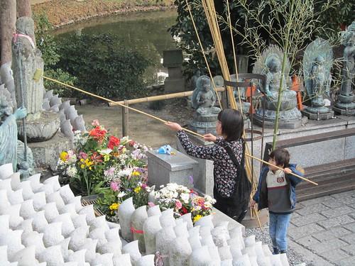 Watering the Buddha...