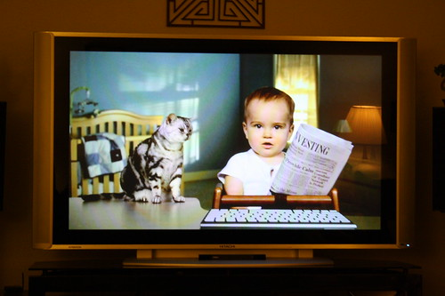 cat and baby etrade commercial