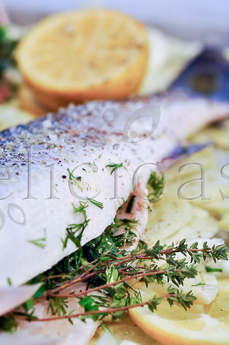 Lup de mare cu fenicul si plante aromatice