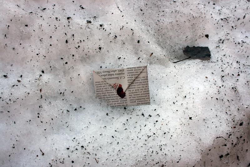 valentine in snow