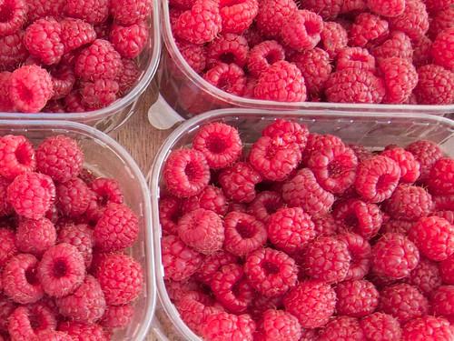 Raspeberries