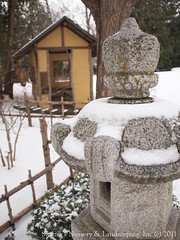 Japanese Tea House provides shelter from the Snow