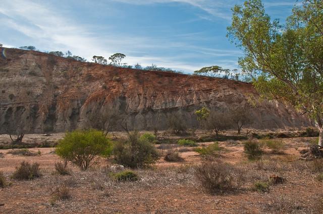 Part of the Permian succession, Coalseam Park