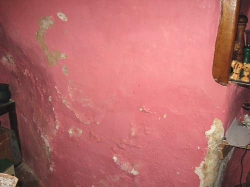 pink kitchen wall