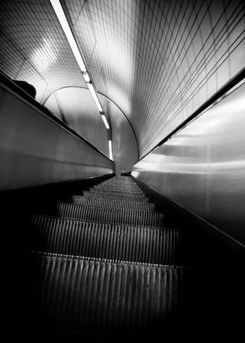 toulouse-3 by Simon Gratien