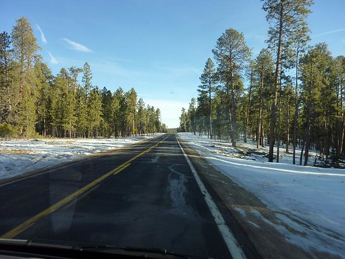 Grand Canyon 1- road with snow