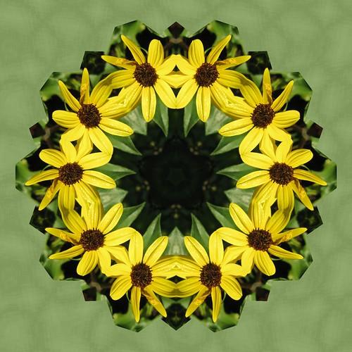 YellowFlower 2
