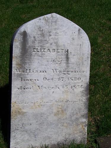 Waggoner (2)