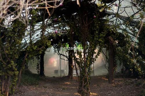 Yangjae31web