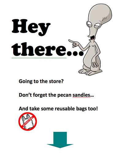 Reusable Bags Pic