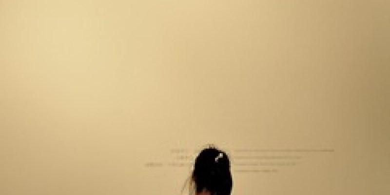 潘大謙「閃燃─發酵的皮層」兩個展覽