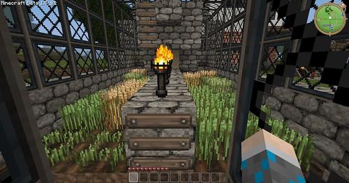 Minecraft - Greenhouse Inside