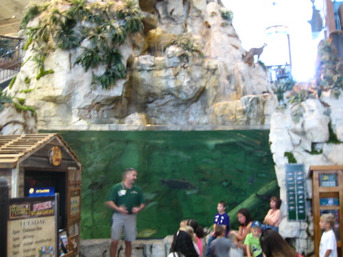 Ft Myers Bass Pro Shops Outdoor Pets Workshop