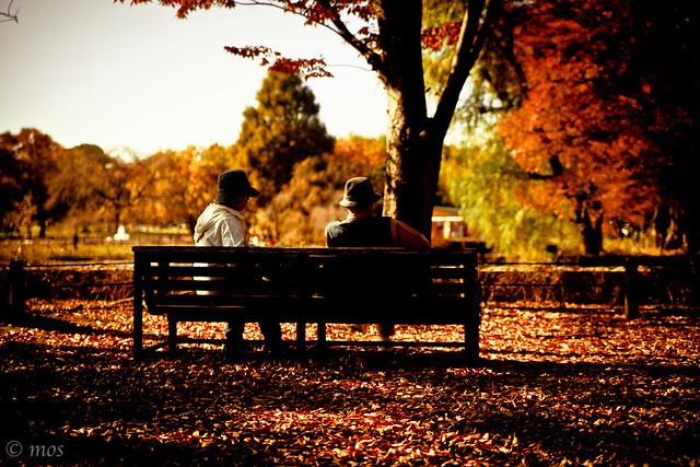 warm autumn afternoon