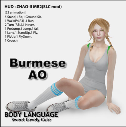 Burmese Ao